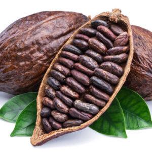 cacao-chocolate-fabrica-españa